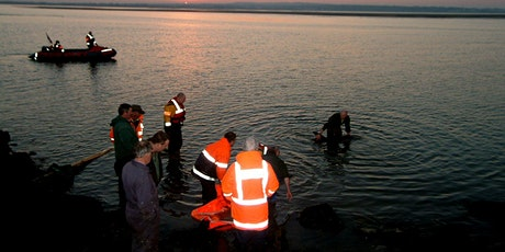 Live Stranding Course Mayo tickets