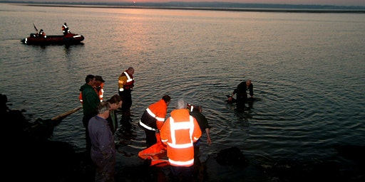 Live Stranding Course Mayo