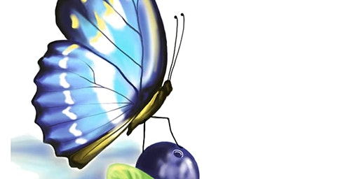 Butterfly & Blueberry Festival at Timberline Farm