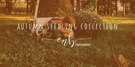 Autumn Seedling Collection: Mini Sessions tickets