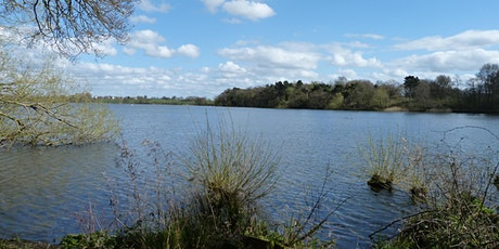 Explore Marbury Country Park with Halton and Warrington local group tickets