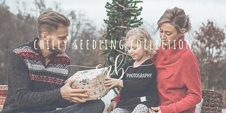Chilly Seedling Collection: Mini Sessions tickets