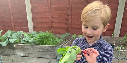 Grow Your Own Fruit and Vegetables Workshop 2020 (AFFORDABLE) – Preston