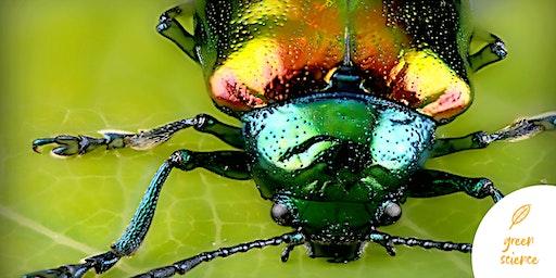 Green Science. Animali fantastici e come programmarli - l'esoscheletro
