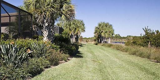 Home Landscape Maintenance Series: Florida Lawn Care and Maintenance