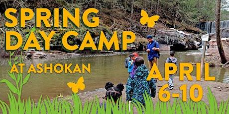 Ashokan Spring Day Camp 2020 tickets