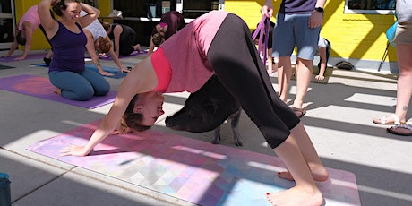 Yoga with Rescued Pigs @ Brewability  tickets