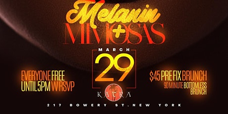 Melanin & Mimosas Brunch & Day Party: March 2020 Edition tickets