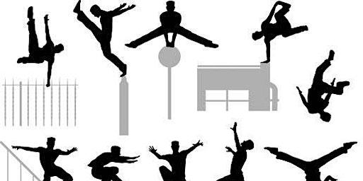 Gymnastics Family Parkour!
