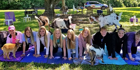 SMALL GROUP - Goat Yoga Katy in the Country!!! tickets