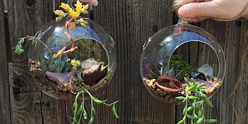 Crystal Terrarium Succulent Workshop