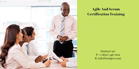 Agile & Scrum Certification Training in n Sainte-Anne-de-Beaupré, PE tickets