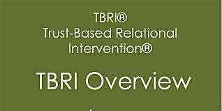Northern Region, Trust Based Relational Intervention (TBRI)