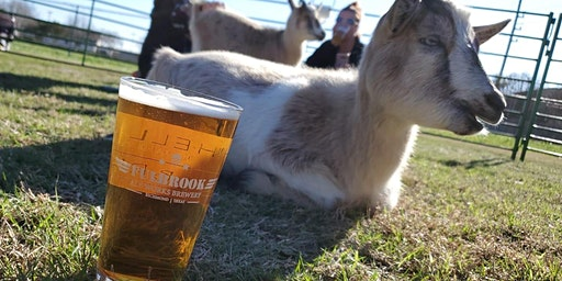 Goat Yoga Texas - Goats'n Beer! - Sat., March 7 @ 2PM