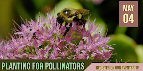 Blue Thumb Workshop: Planting for Pollinators - Mahtomedi tickets