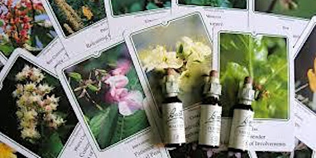 Bach Flower Remedies for Pregnancy and Postpartum CANCELLED tickets