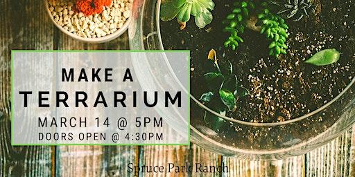 Make a Terrarium Night