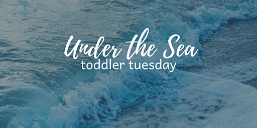 """Toddler Tuesday""""Lil Chefs"""": Under the Sea"""