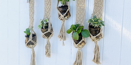 Macrame Plant Wall Hanging