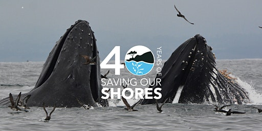 Save Our Shores - Educational Program for Homeschoolers