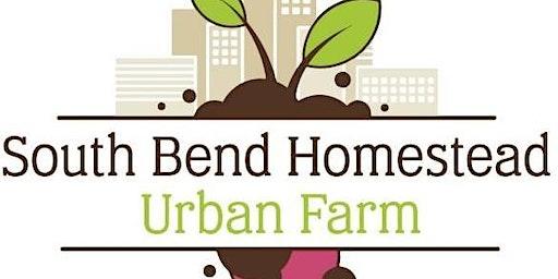 8 Year Retrospective of Urban Farming.