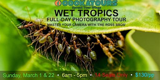 Wet Tropics Full-Day Photography Tour 2020