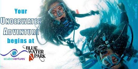 Learn to Dive: Open Water Scuba Certification tickets
