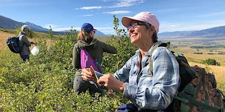 Medicinal Plant Walks- Suce Creek Trailhead tickets