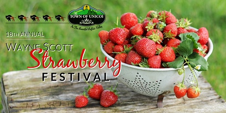 18th Annual Wayne Scott Strawberry Festival in Unicoi, Tennessee tickets