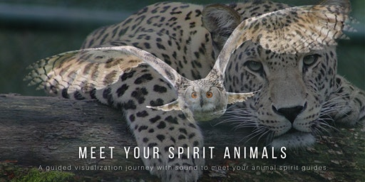 MEET YOUR SPIRIT ANIMALS