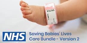 Saving Babies Lives Study Day
