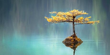 Innere Ruhe finden. Das Meditationsprogramm Joy of Living - Abendvortrag mit Holger Yeshe Tickets
