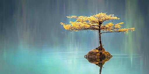 Innere Ruhe finden. Das Meditationsprogramm Joy of Living - Abendvortrag mit Holger Yeshe