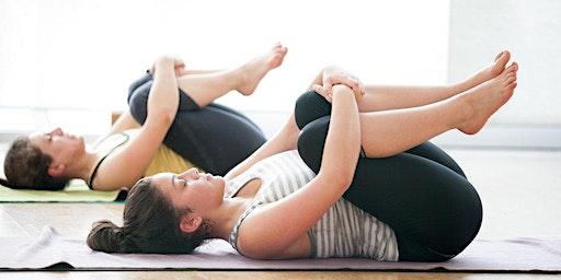 Yin Yoga + QiGong Free Class