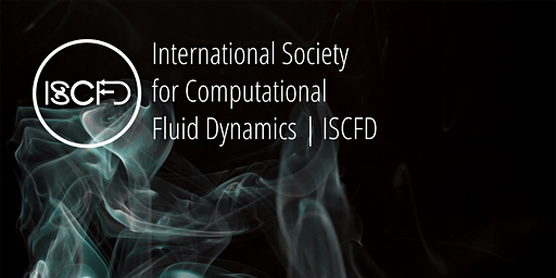 CFD Simulations of the Human Brain
