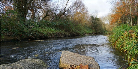 Tranquil Walk - Catford's Waterlink Way tickets