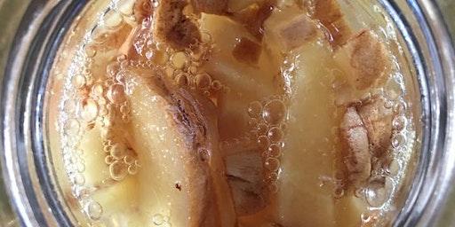 GInger Bug & Probiotic Soda Masterclass
