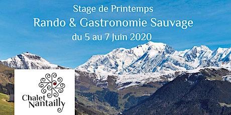 """Stage """"Cueillette sauvage, gastronomie et randonnée"""" dans les Alpes billets"""