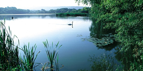 History and Wildlife of Weston Turville Reservoir tickets