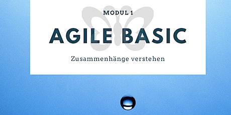 MODUL 1: AGILE BASIC - Zusammenhänge verstehen Tickets
