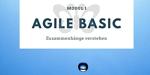 MODUL 1: AGILE BASIC - Zusammenhänge verstehen