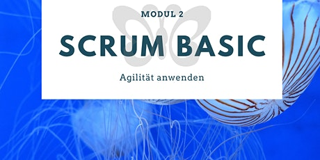 MODUL 2: Scrum BASIC - Agilität anwenden Tickets