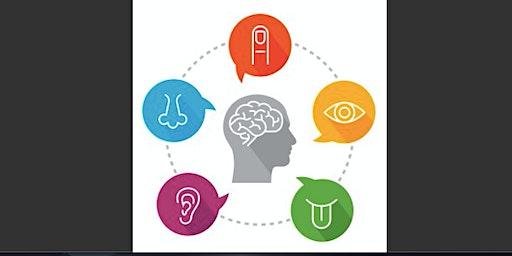 Sensory Processing & Practical Applications