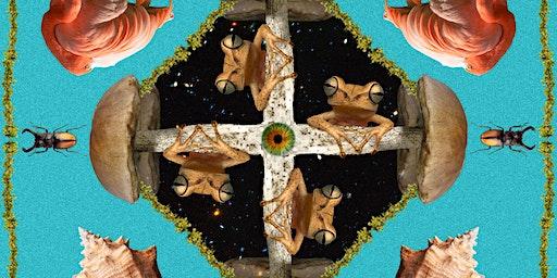 Harmonies of Hibiscus