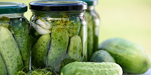 Fast, Fresh Refrigerator Pickles