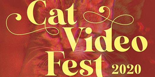 CatVideo Fest (Encore Screening)