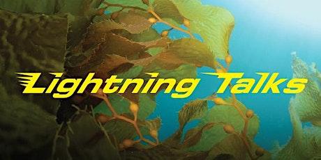 Lightning Talks tickets