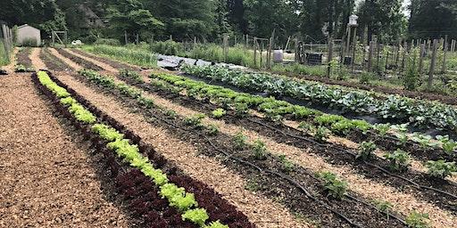 Plan Your Garden Workshop