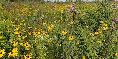 Prairie Pollinator Workshop tickets