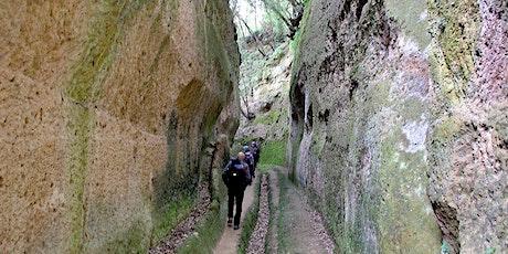 Le magiche Vie Cave e la Valle del Tufo, passo dopo passo tickets